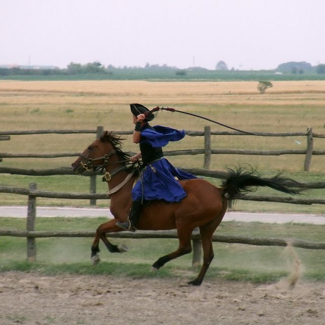 Hungarian Horse Show - Puszta: Equestrian Show in the Puszta of Hungary