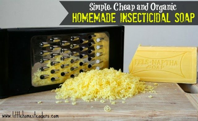 Homemade Insecticidal Soap - http://www.ecosnippets.com/diy/homemade-insecticidal-soap/