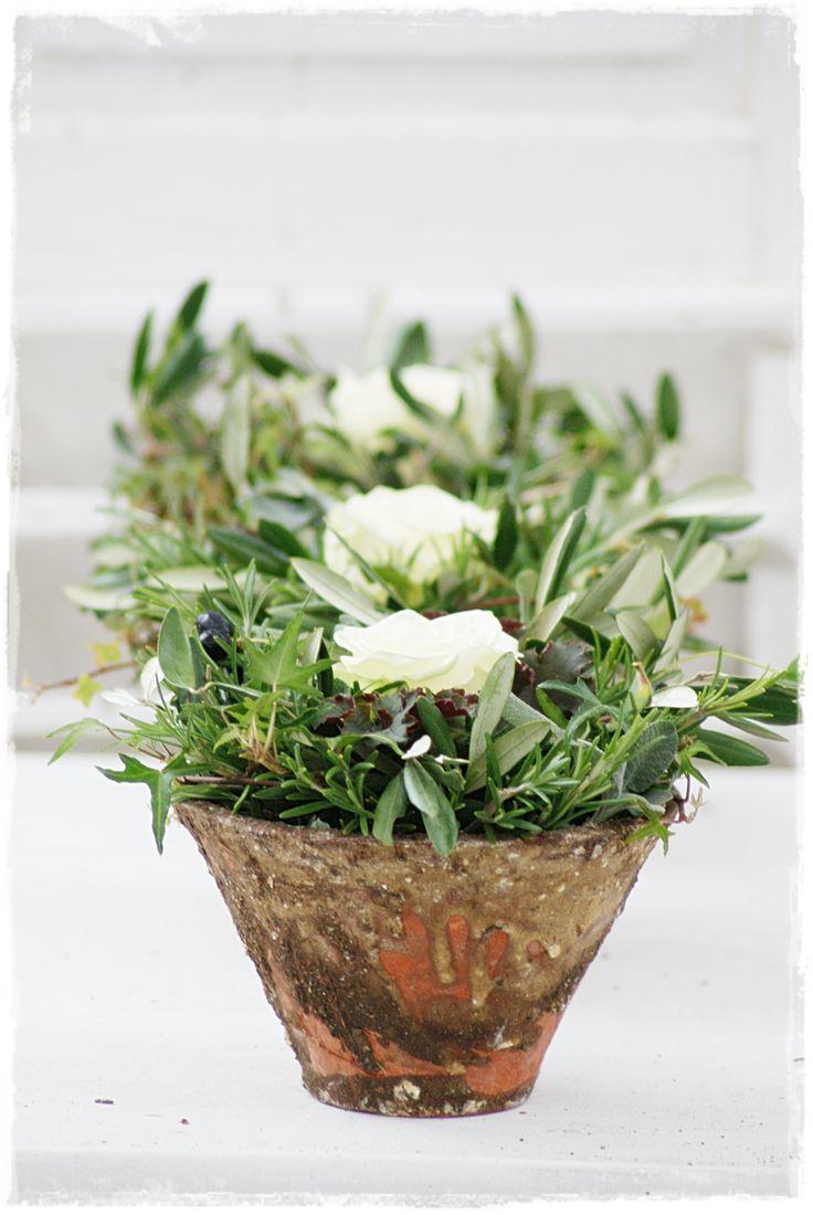 Cute Precious white roses and olives Wohnen und Garten Foto