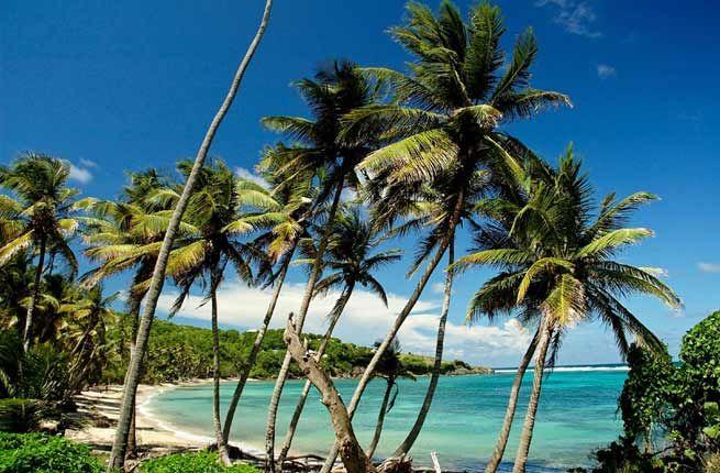 Casa Bonita Tropical Lodge - Cheap and Chic: 14 Affordable Caribbean Hotels | Fodors