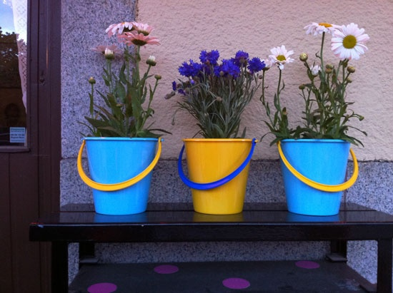 potted plants in sand buckets