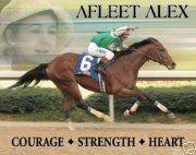 Te anoté en una ordinaria/entraste medio prendida.....: Beautiful Horses, Legendary Off, Afleet Alex, Miracle Hors, Horses Dreams, Famous Horses, Dreams Hors, Favorite Horses, Racing Hors