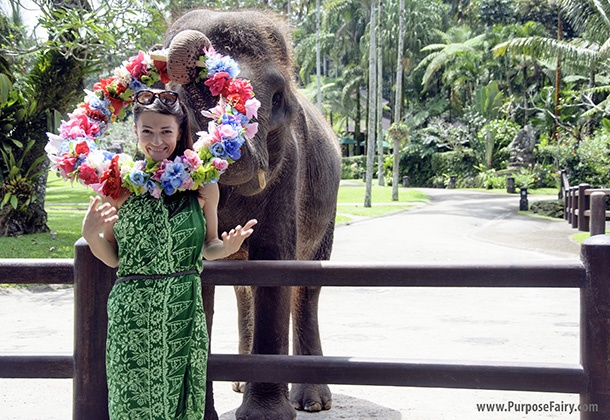 Bali Elephant Sanctuary