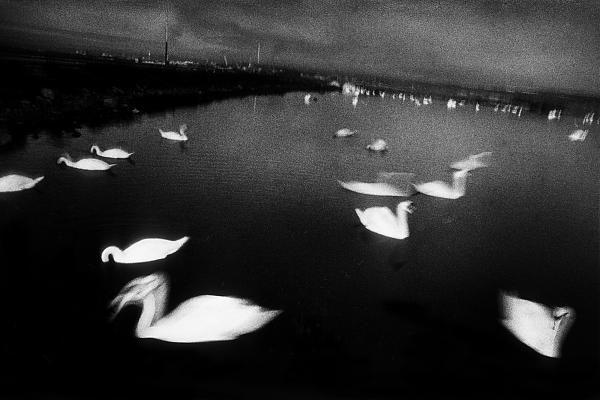 Antoine dAgata - Antoine dAgata, Insomnia, livre aux éditions Images en Manœuvre, 2003 | Galerie Les Filles du Calvaire