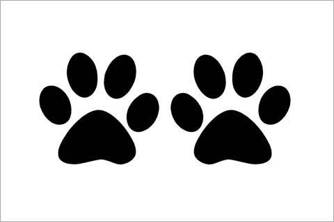 huellas de gato para imprimir - Buscar con Google