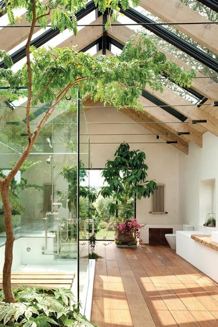 Lovely bathroom complete with tree.