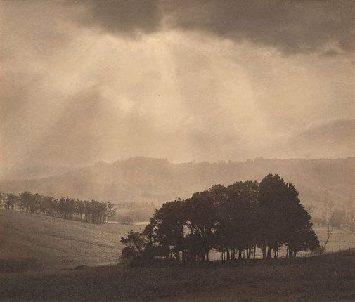 An image of After rain by Harold Cazneaux