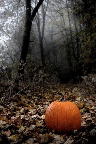 Dark Autumn | Creatinghome.net
