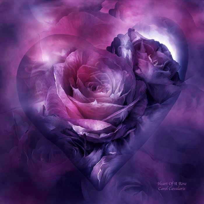 Beautiful Purple Heart with Roses.