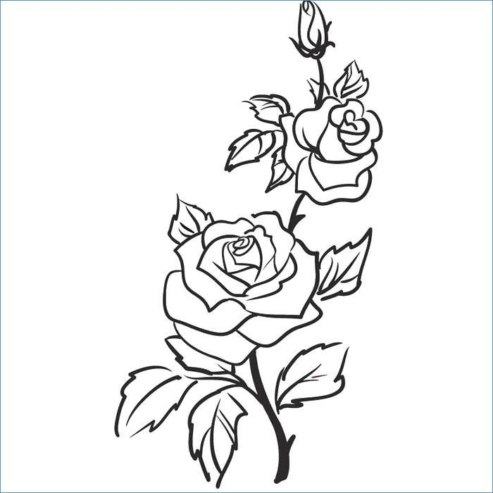 98 Einzigartig Blumenranken Zum Ausdrucken Das Bild Kinder Bilder Weinrebe Zeichnung Rosenzeichnungen Rosen Umriss
