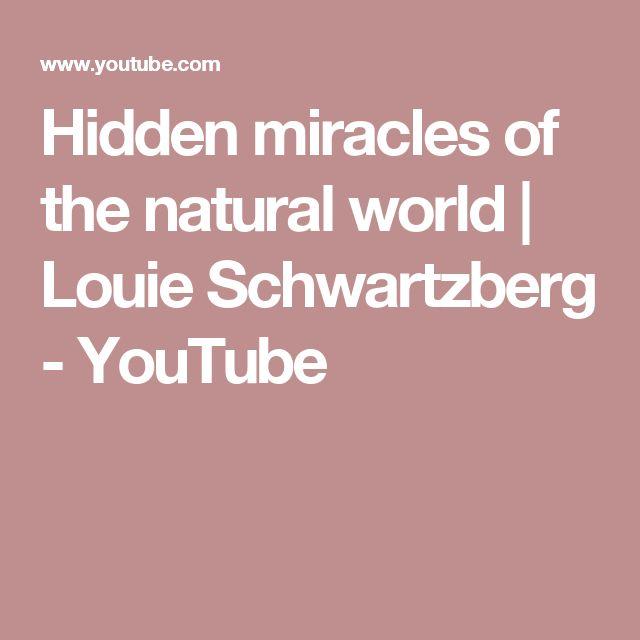 Hidden miracles of the natural world | Louie Schwartzberg - YouTube