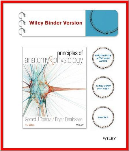 377 best Internet eBooks images on Pinterest | Book clubs, Internet ...