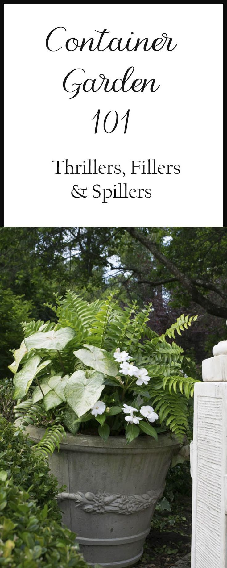 The basics of container gardening: Thrillers, Fillers and Spillers. Lists of suggested plants and plant combination recipes and examples.