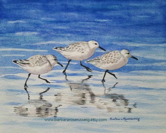 Coastal Art, Shore Birds Watercolor Painting, Matted Beach Print by Barbara Rosenzweig. Perfect for your Beach or Child's Room Décor. 3 sizes available.