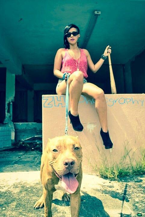 Urban badass model pitbull pet dogs photography