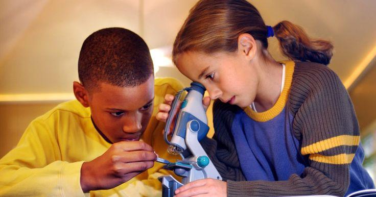 Método científico vs. método experimental. El aprendizaje experimental implica hacer algo, aprender de los errores y la adquisición de experiencia, conocimientos o habilidades en este proceso. El aprendizaje científico implica hacer una pregunta y encontrar la evidencia para responderla. Esto por lo general despierta el interés y la curiosidad sobre lo que sucede. El método científico ...