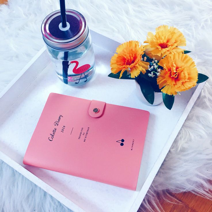 Beautiful Colette diary