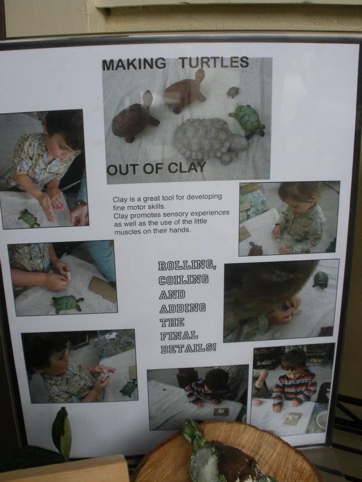 Here is a documentation on a clay turtles project to consider.