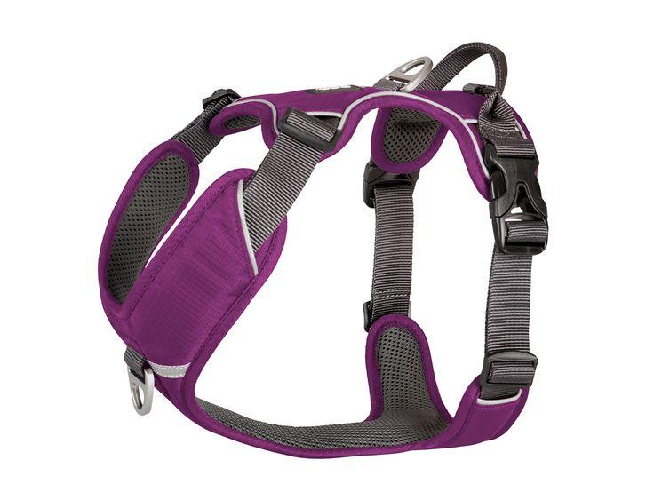 Comfort Walk Pro Harness from DOG Copenhagen - Purple Passion