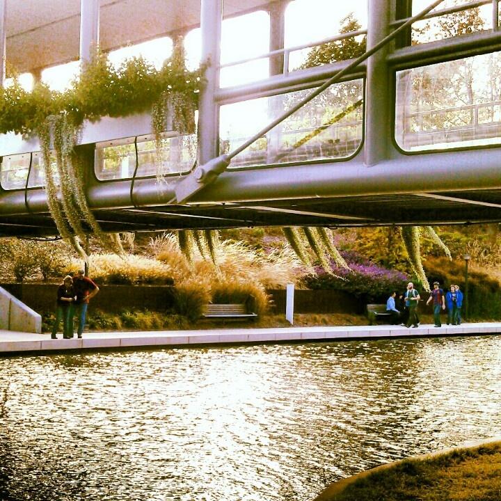 Glass bridge in the Myriad Gardens