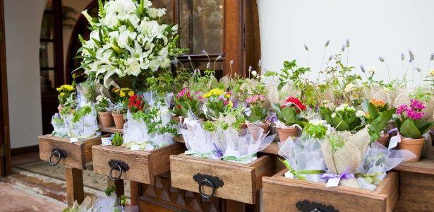 Veja opções de lembrancinhas em vasos ou tubos com plantas e flores - UOL Estilo de vida