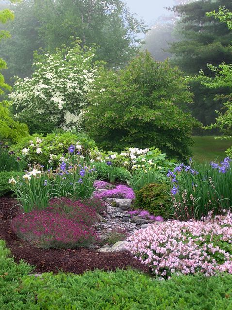 A beautiful spring garden.