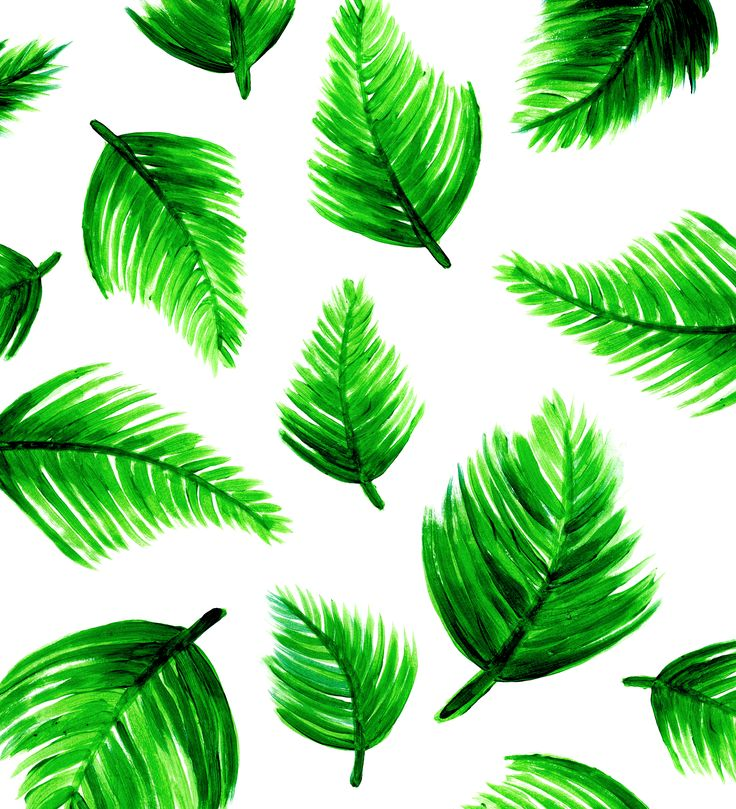 tropical wallpaper pattern - photo #19
