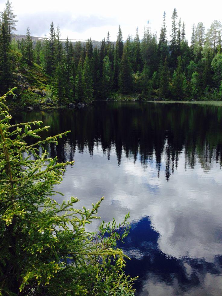The lake by my cabin in Ljørdalen