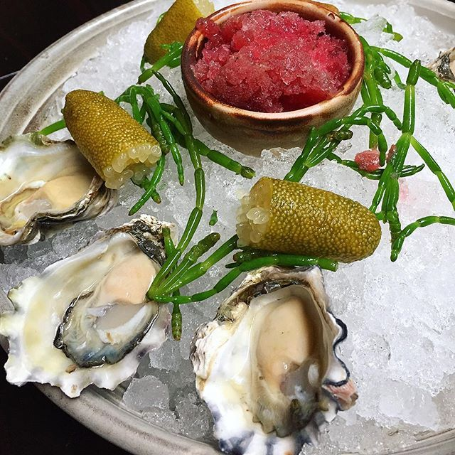 Australia on a plate! #oysters #fingerlimes #samphire #bloodorange #granita 👌 #silvesters #restaurant #bar #sydneyeats #sydneyrestaurants #marriott #hotel #hotellife #SilvestersRestaurant @marriotthotels @marriottintl #australia #yummy #seafood #fresh #salty #produce #seatoplate #foodporn @silvestersrestaurantandbar