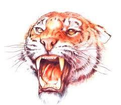 Risultati immagini per tatuaggio tigre e fiori