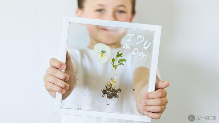 diy geschenke für mutti, weiße getrocknete blume, basteln mit kindern unter 3,…