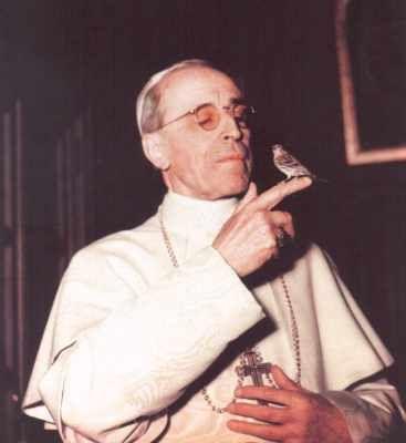 ven. pope pius xii & his bird