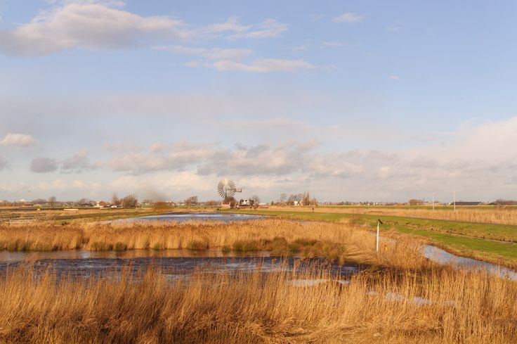 the polder by robert lotman on 500px