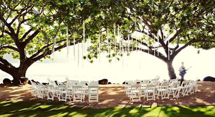Love the shady tree for the guests and the hanging decor for ambiance.  Kauai Hotels | St. Regis Princeville  | Hanalei Bay Resorts
