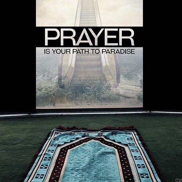 Ameen ✨❤️ • • • #subhanallah #alhamdullilah #allahuakbar #allah #quran…
