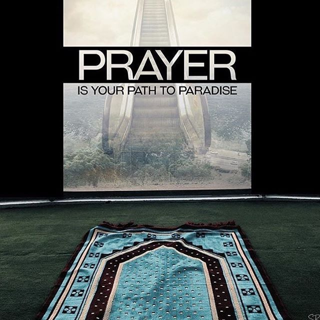 Prayer. .                                                                                                                                                                                 More