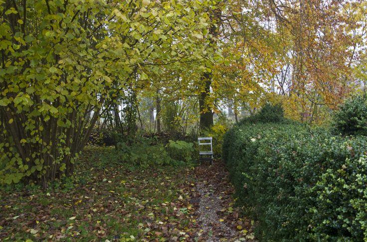 Autumngarden, photo Sophia Callmer
