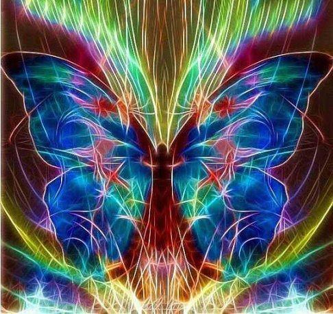 butterfly fractal:
