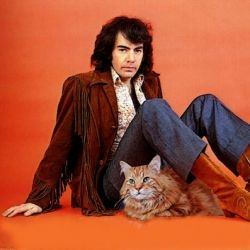 this is so weird: >>> Make a custom portrait of your cat with Neil Diamond (or any other celebrity)