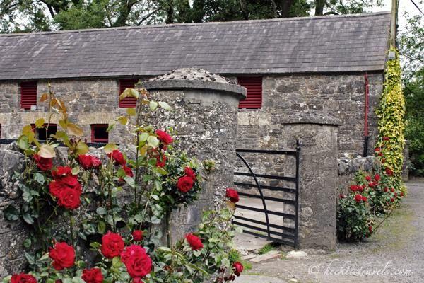 Irish Rose Garden