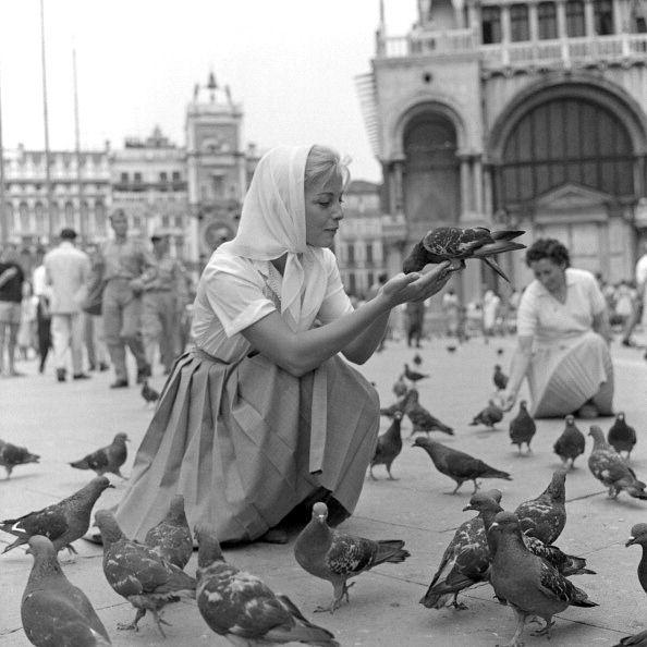 Italian actress Virna Lisi feeding the pigeons in St. Mark's Square, Venice, Italy, 1959