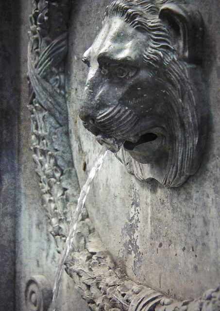 Fountain with a lions head