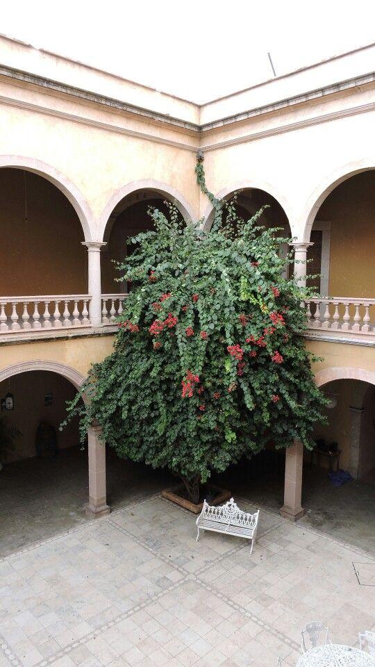 Ex hacienda gogorrón