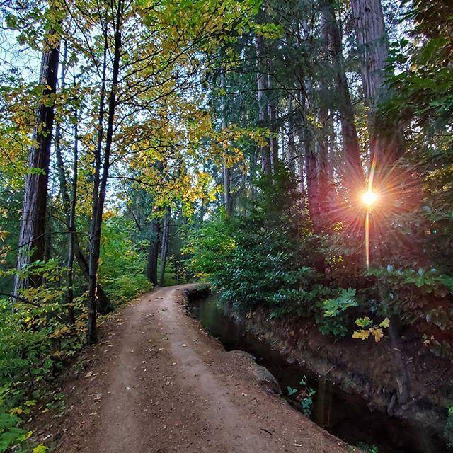 Take A Hike! Photo By Allison Denton