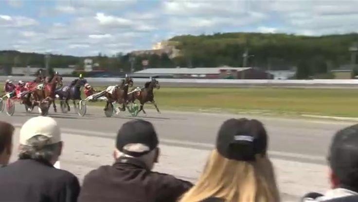 nice Harness racing goes forward in Saint John despite uncertain future Check more at http://sherwoodparkweather.com/harness-racing-goes-forward-in-saint-john-despite-uncertain-future/