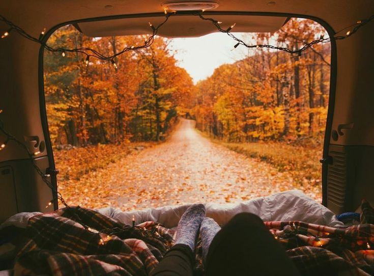 Die besten Foliage Tours für diesen Herbst