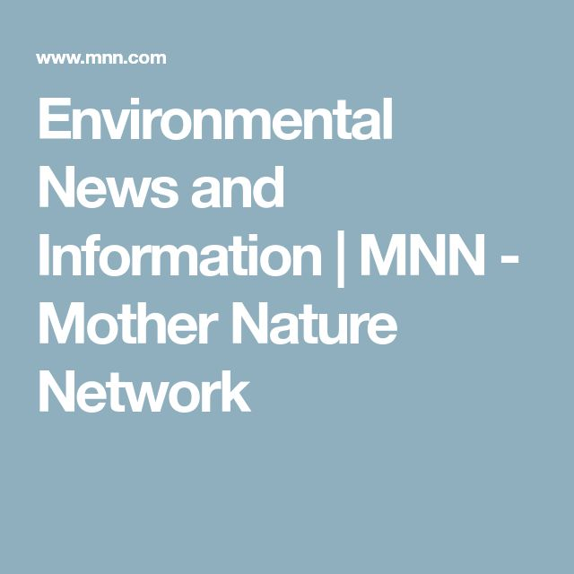 Environmental News and Information   MNN - Mother Nature Network