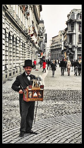 The Old Organ Grinder in Bucharest.