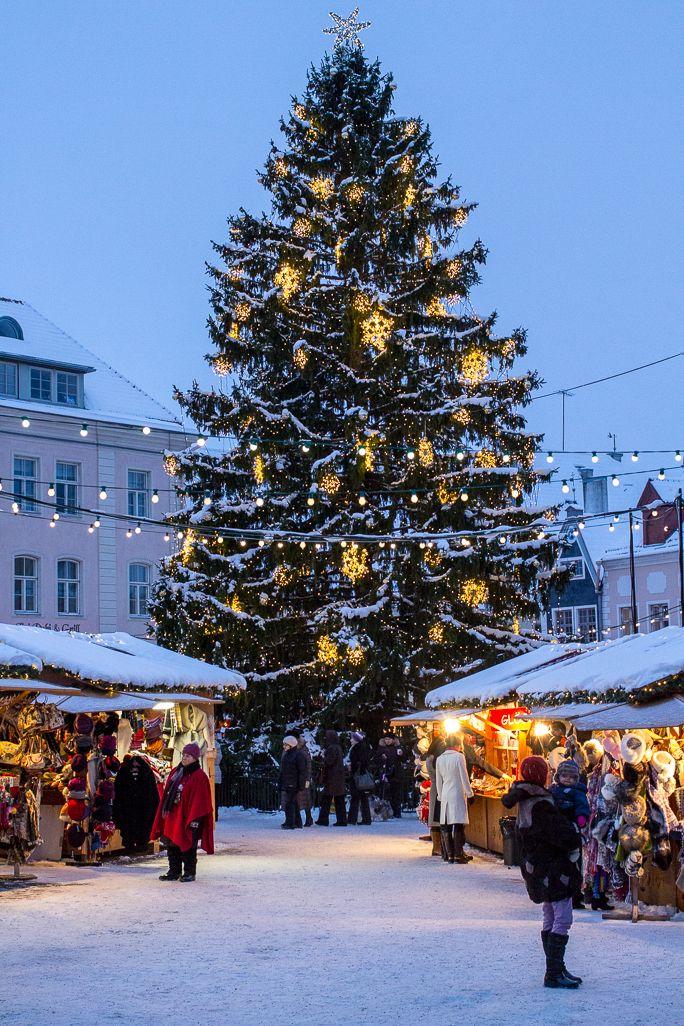 spend part of the christmas season in a small european town maybe tallinn estonia - European Christmas Tree