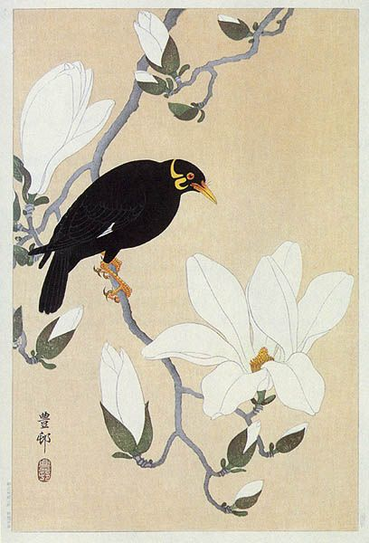 Myna on Magnolia Branch by Ohara Koson